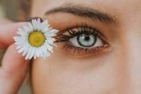 Weiche Jahreslinsen