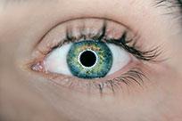 Jahreslinsen