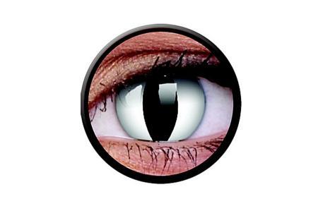Funny Lens 2 Motiv-Drei-Monatslinsen Viper   Funny Lens 2 Motiv-Drei-Monatslinsen Viper